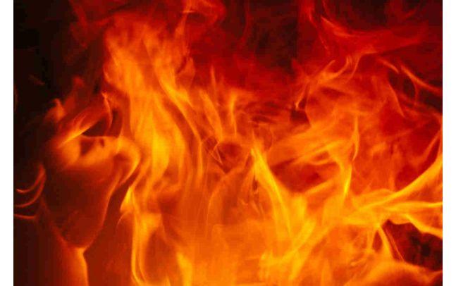 Algeco 360 Grad Service Brandschutztüren